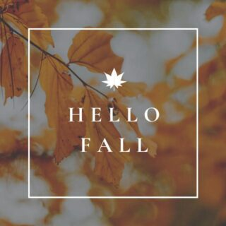 Pause the true-crime binge, spooky season is upon us 🎃   Get your coats, jackets, and broomsticks ready because fall is finally here! We are welcoming the new season with some themed festivities starting with Bingo this week! It's only going to get better from here! 🍁 👻 🥧   #lifeatoutlook #goodbyesummer #hellofall