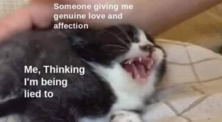 This meme definitely sums up the Taureans we know. We give them love and they are looking for the ulterior motive... To the Taureans in our lives. We love you, whether you like it or not! #taurus #catmeme #lifeatoutlook #loveme #goaway #ulteriormotive